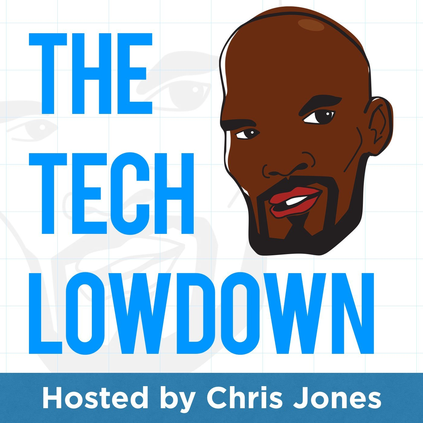 The Tech Lowdown: Insight, Information & Inspiration for Entrepreneurs & Tech Leaders