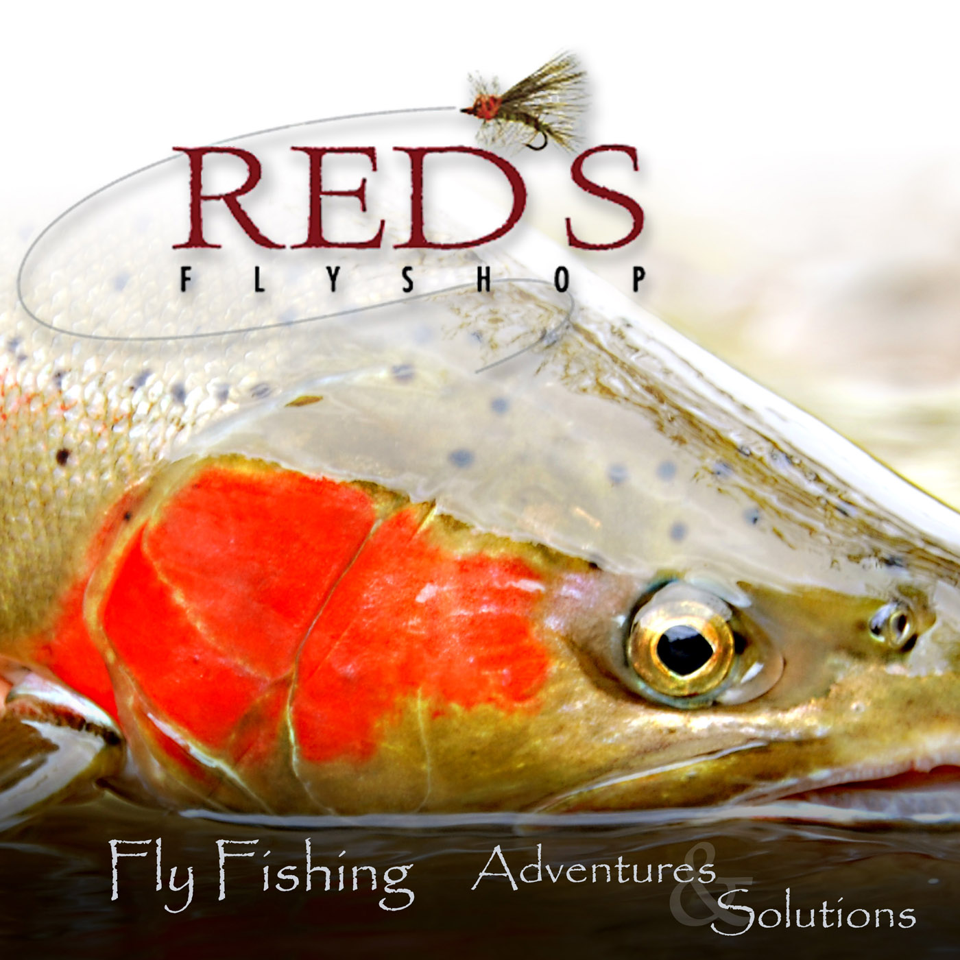 The mend fly fishing podcast with joe rotter and red s fly for The fly fishing shop