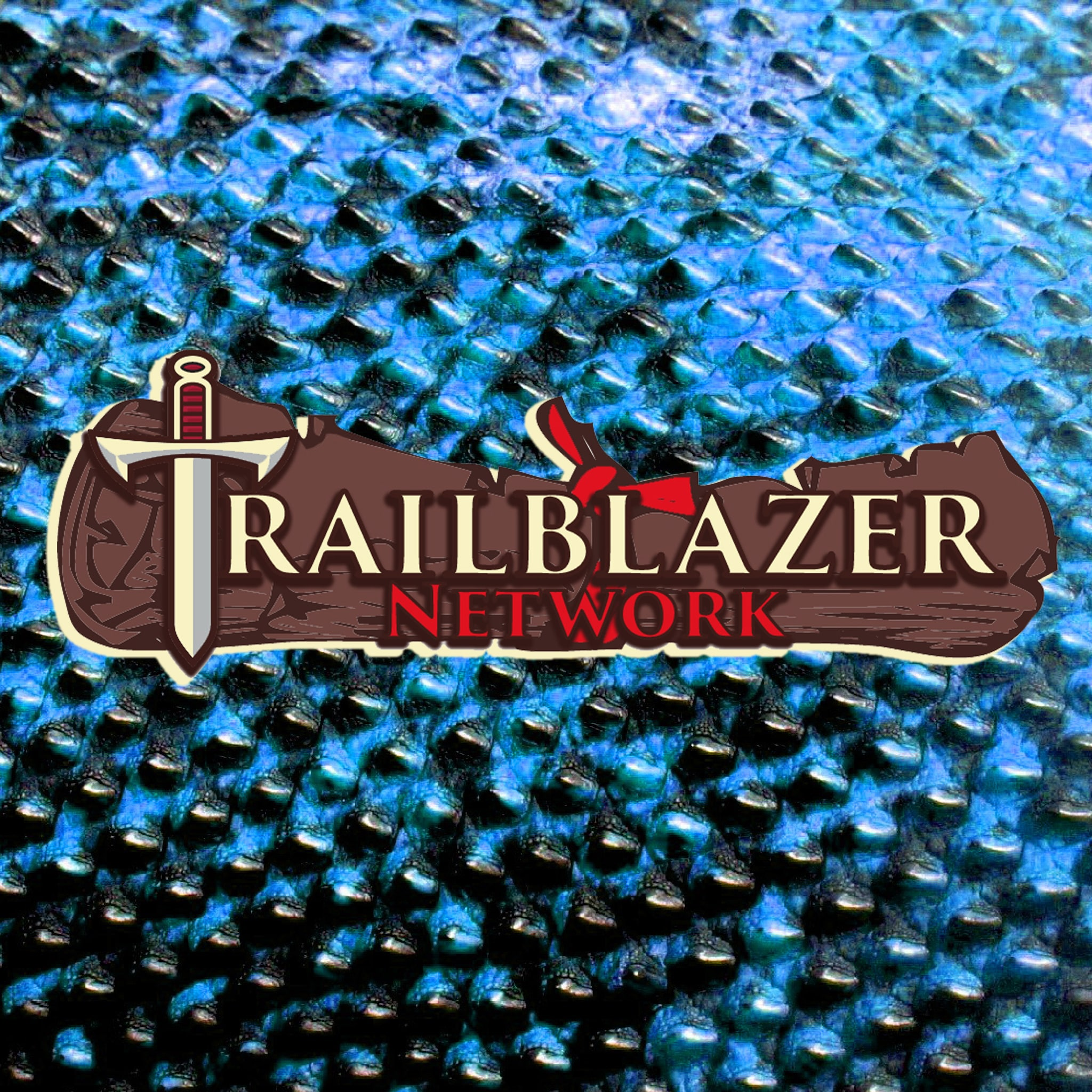 Trailblazer Network logo
