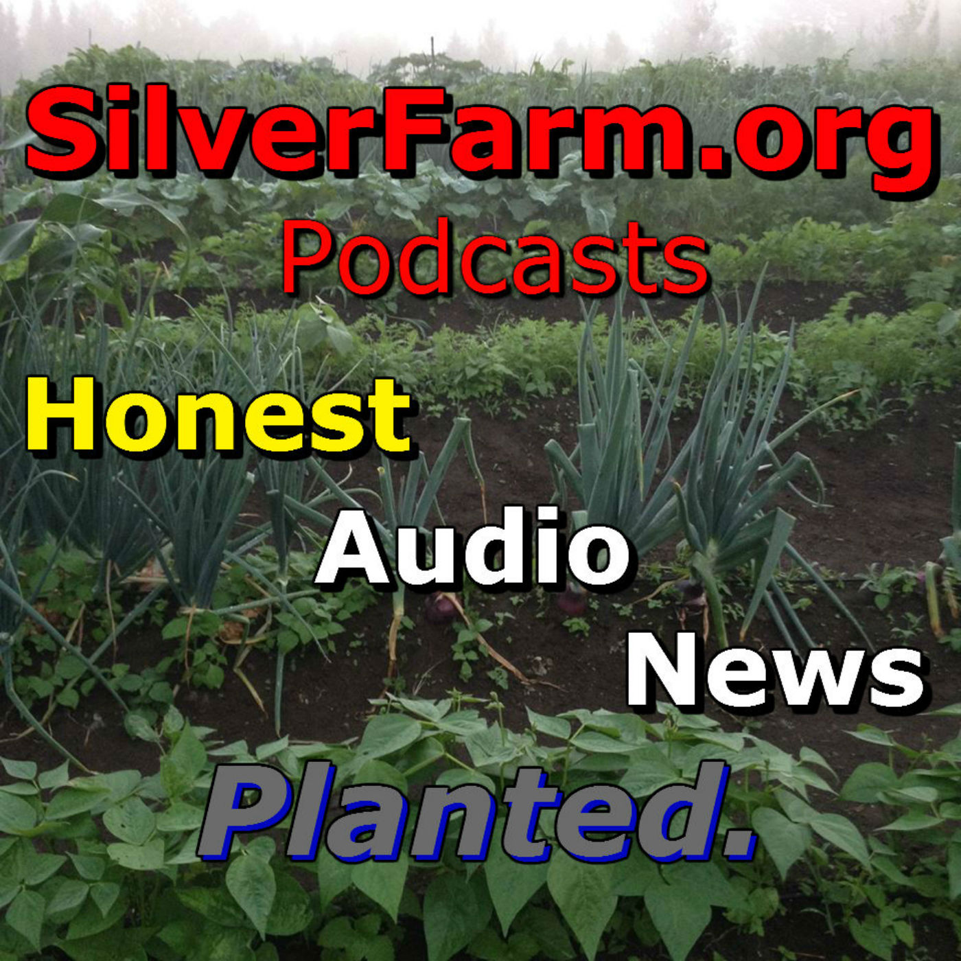 SilverFarm--Honest Audio News