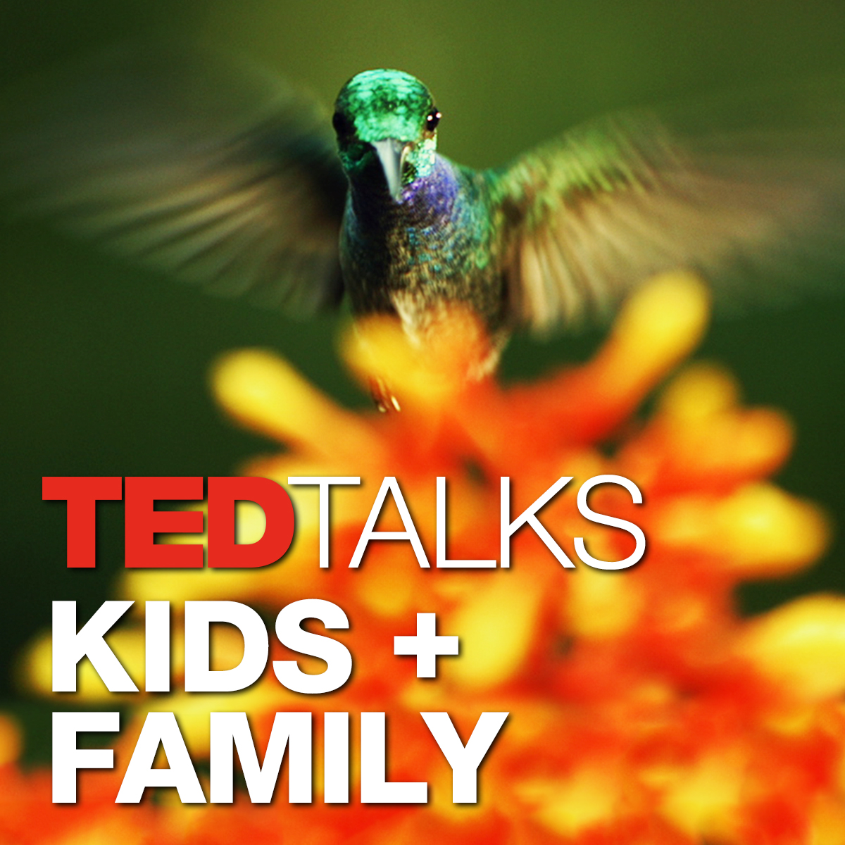 TEDTalks Kids and Family