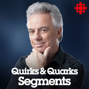 Quirks and Quarks Segmented Show from CBC Radio