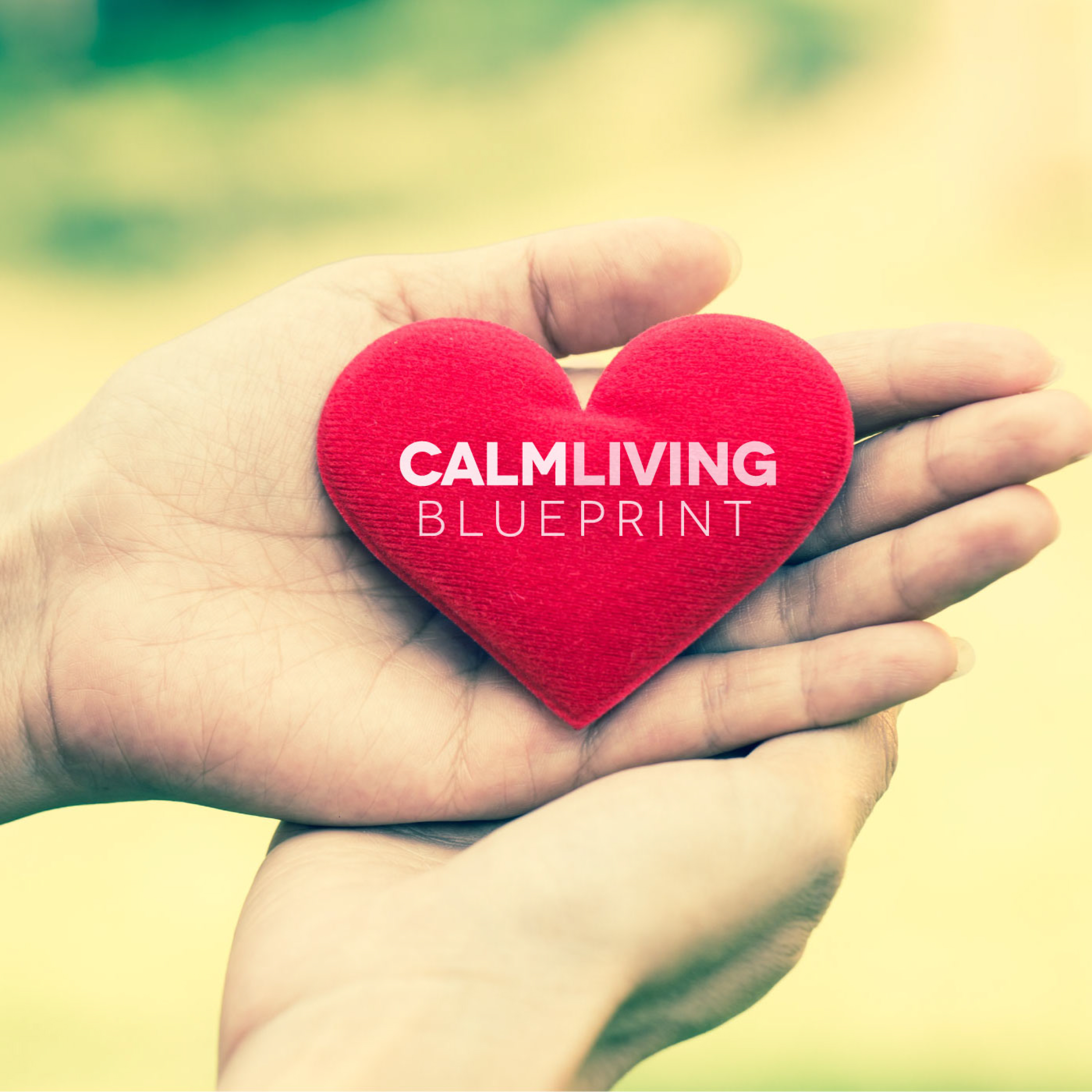 The Calm Living Blueprint: Social Anxiety | Anxiety | Stress | Mindfulness | Inner Peace