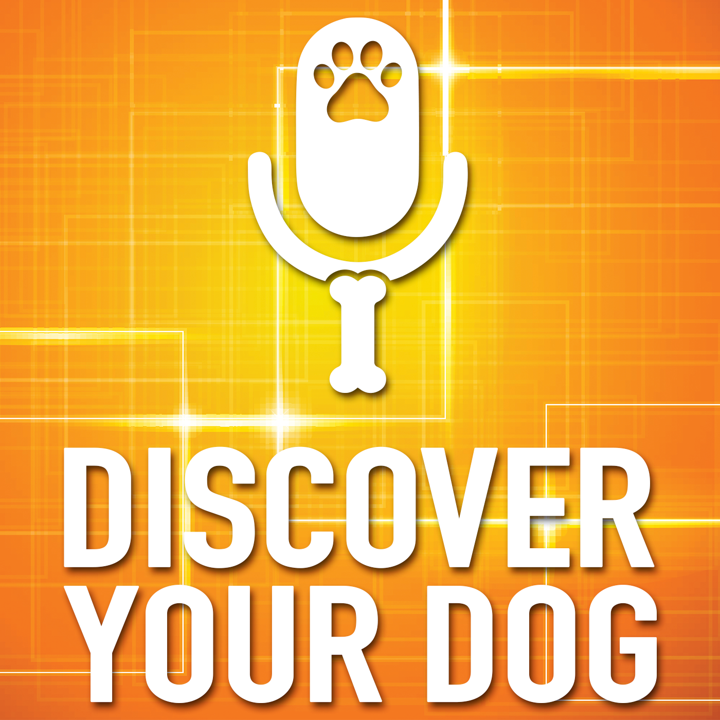 Discover Your Dog