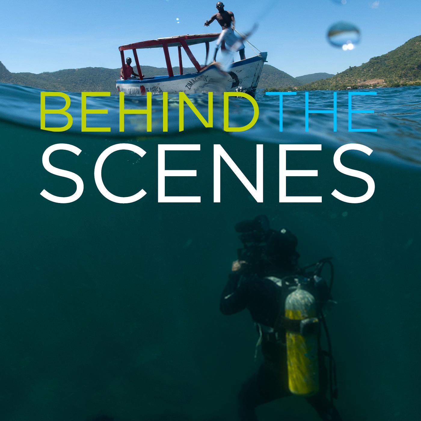 Wildlife Documentaries: Behind the Scenes (HD)