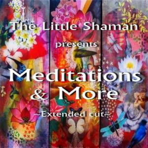SHOWS - The Little Shaman Healing