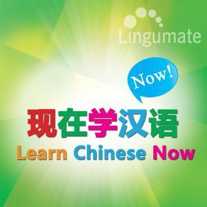现在学汉语 Learn Chinese Now