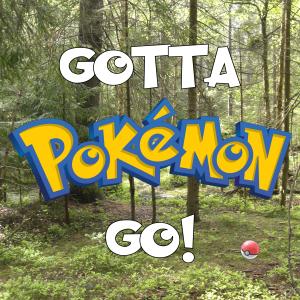 Gotta Pokémon Go