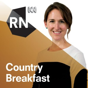 Country Breakfast - Separate stories podcast