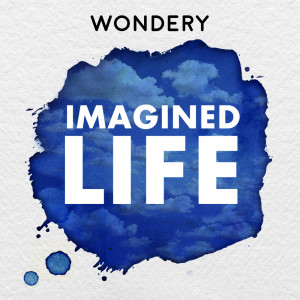 Imagined Life