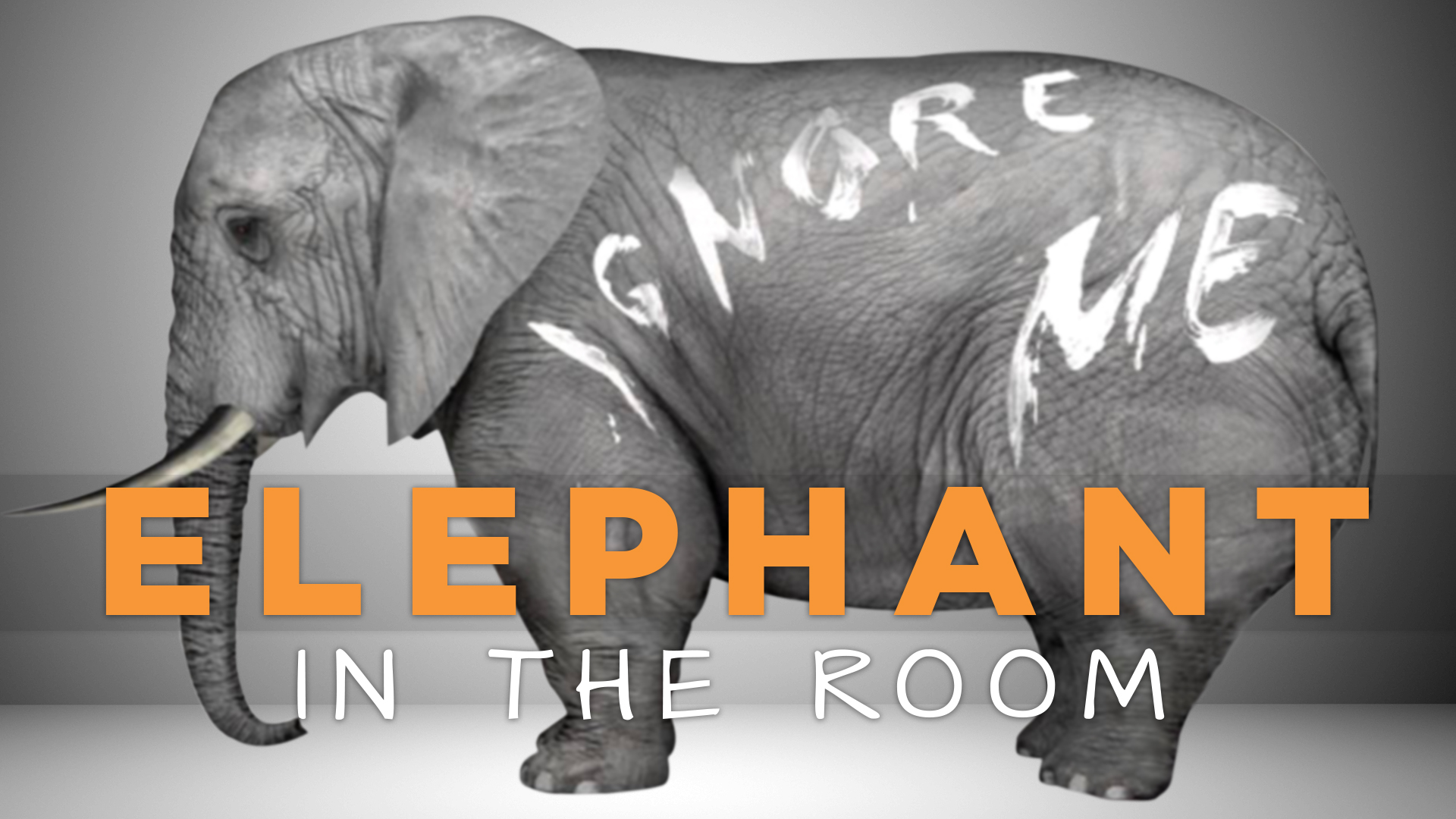 elephant in the room part 2 the living room - The Elephant In The Living Room