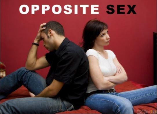 Why the Opposite Sex is so different?