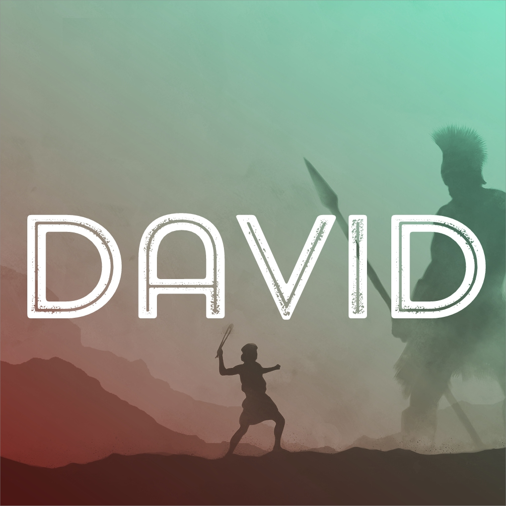 David and the Remarkable Woman // Chris H.