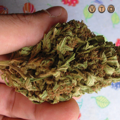 Marijuana offenders face clean slates