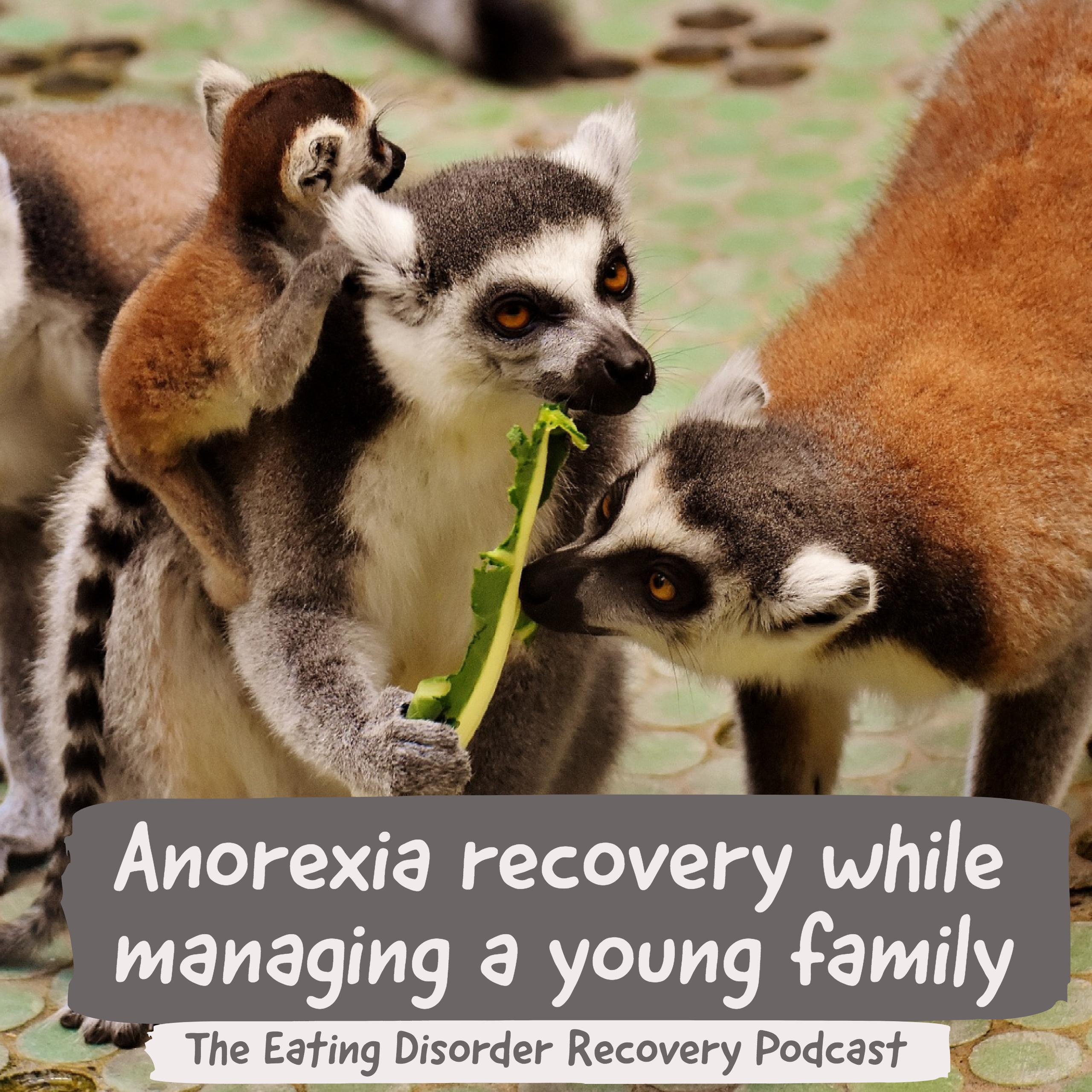 Anorexia recovery while managing a young family.