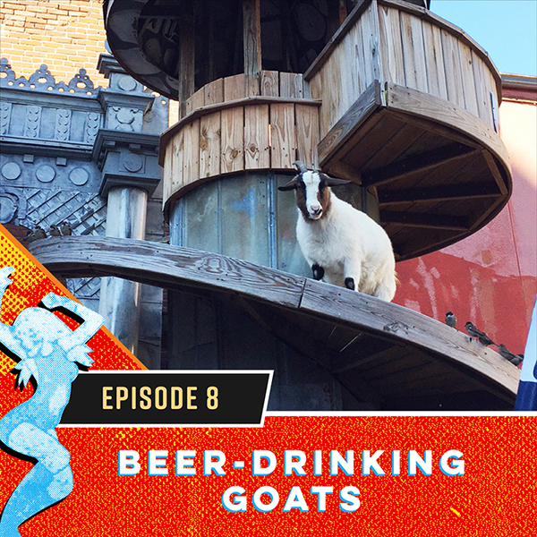 Beer-Drinking Goats at Silky O'Sullivan's