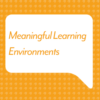 Meaningful Learning Environments