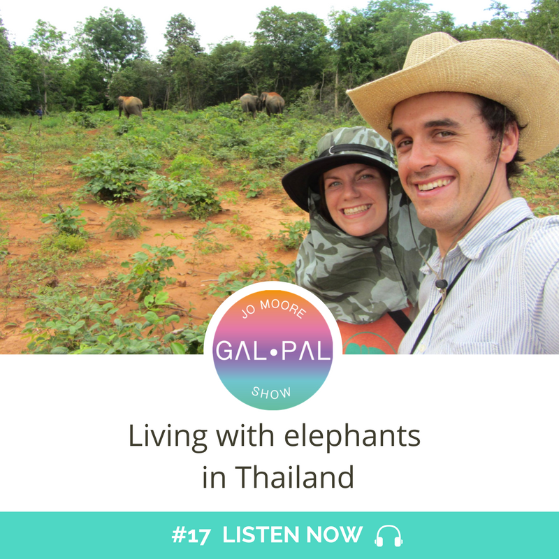 17: Living with elephants in Thailand