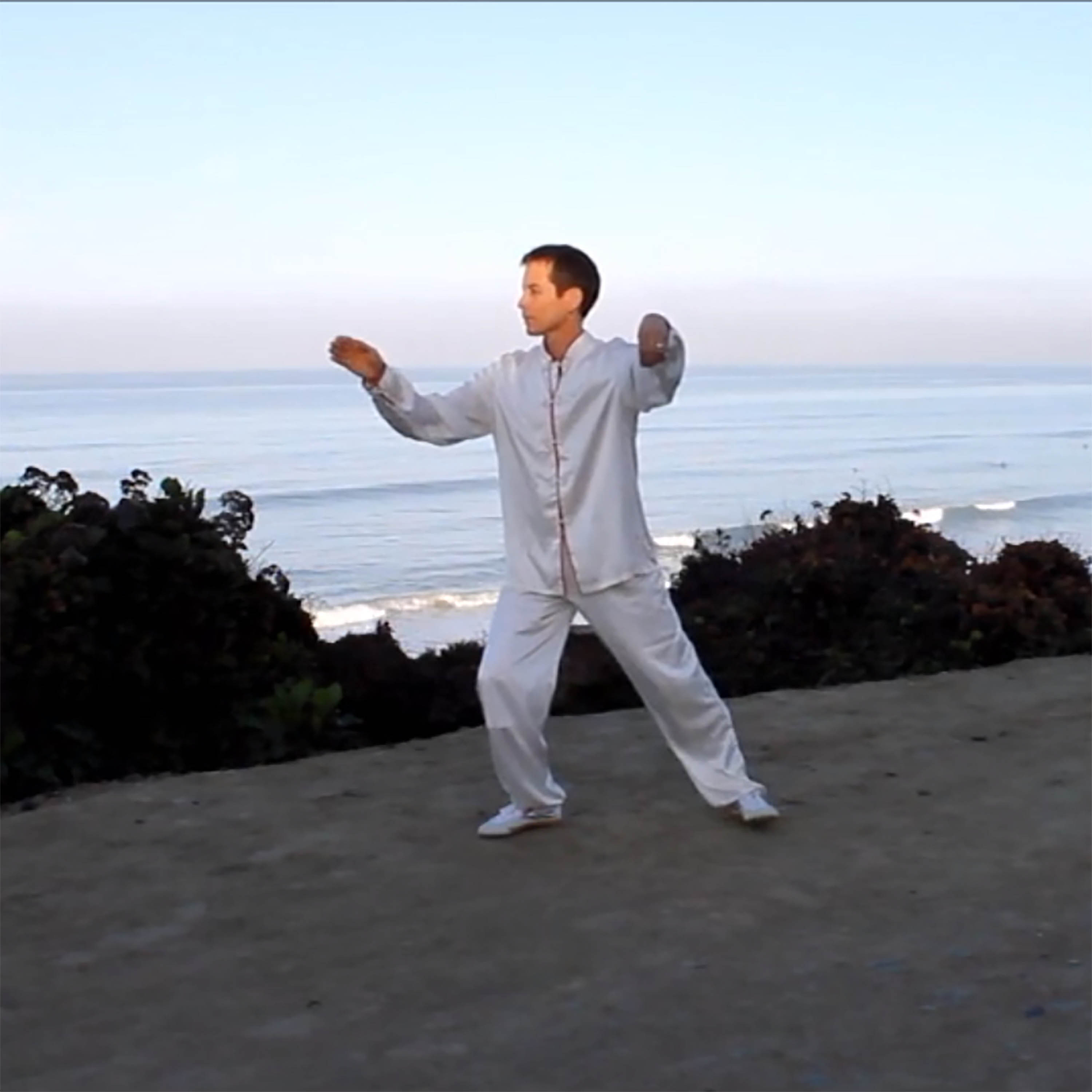 Qi Gong and Tai Ji | Robert Nations