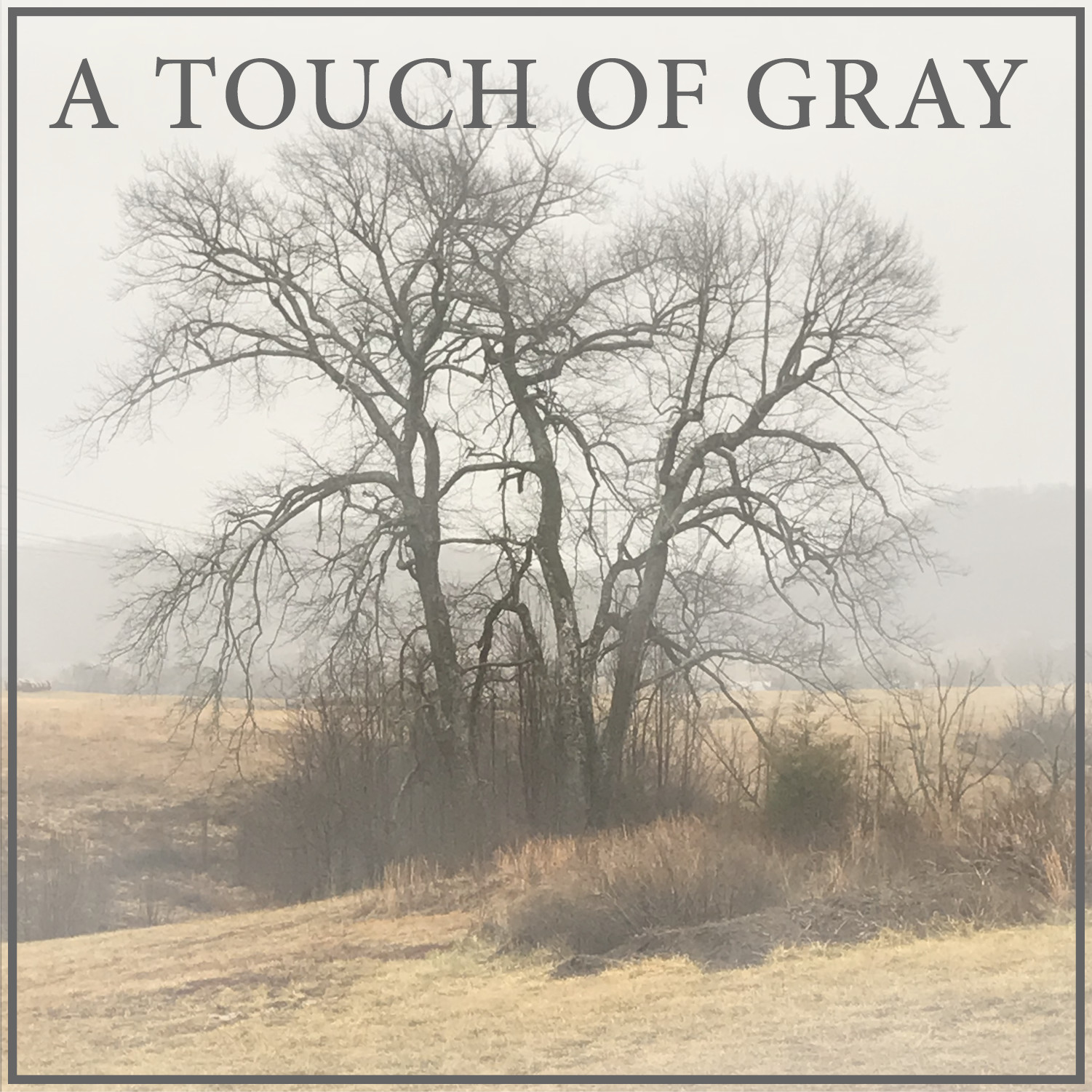 A Touch of Gray - Episode 26- Halloween in the Miocene