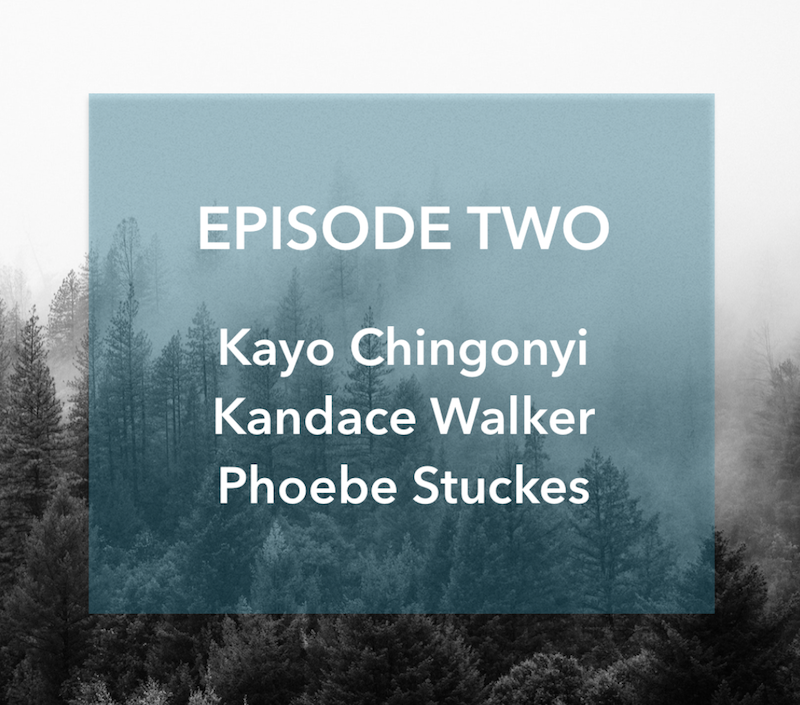 Episode Two: Sympathy for Wild Horses