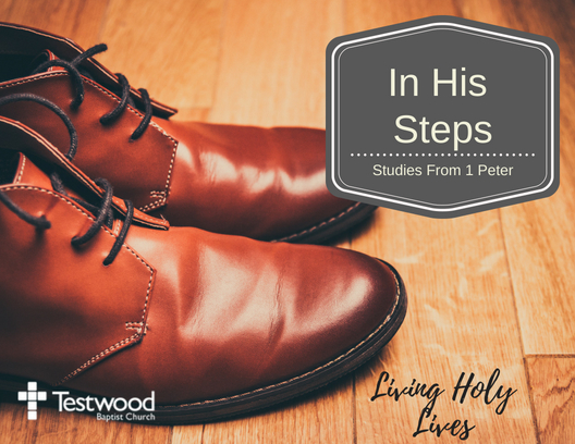 In His Steps - Living Holy Lives - Gordon Tuck