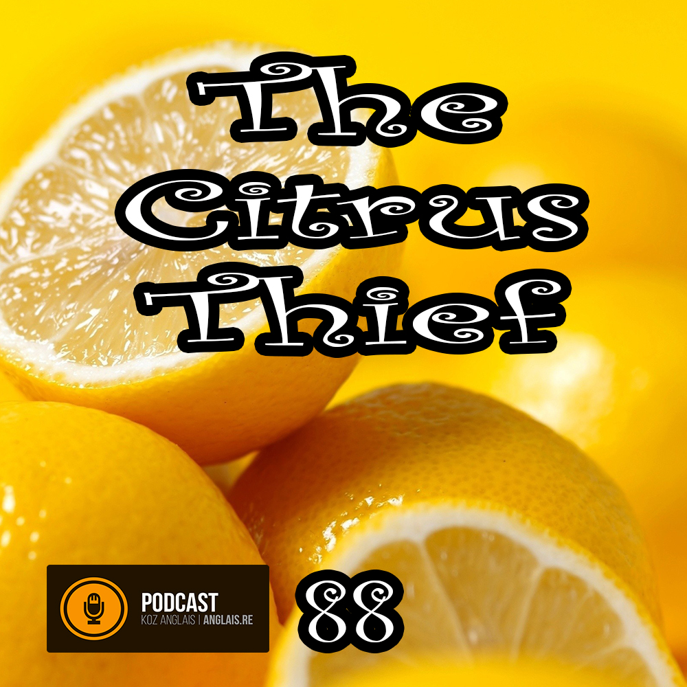 88 - The Citrus Thief - Slow