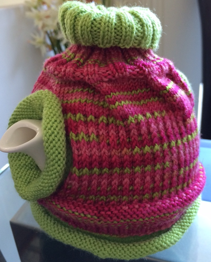 Episode 30: Garden update and Space Cadet mini skeins baby sweater