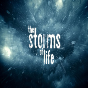Storms of Life (Rodney Pitts)