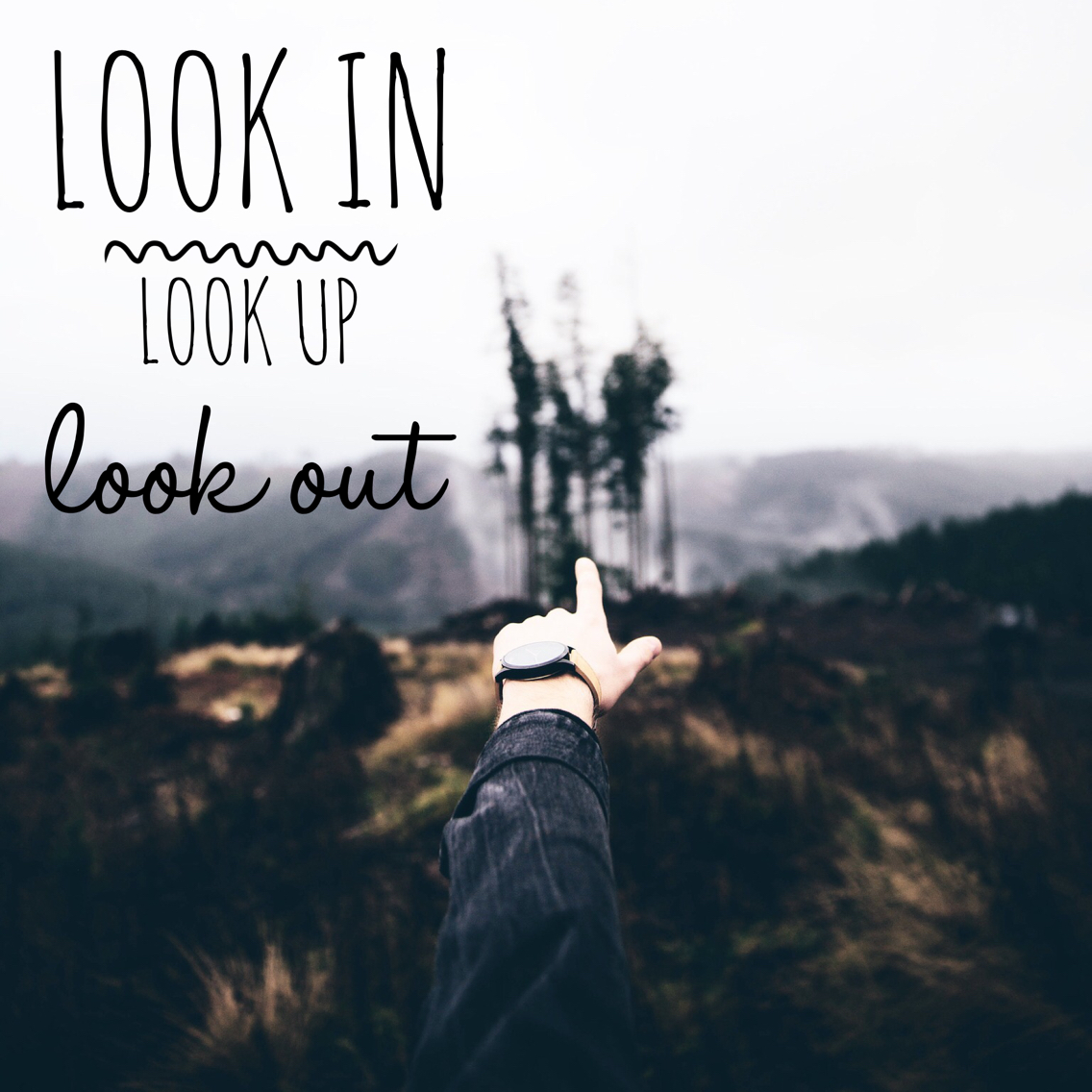 Look in Look Up Look Out