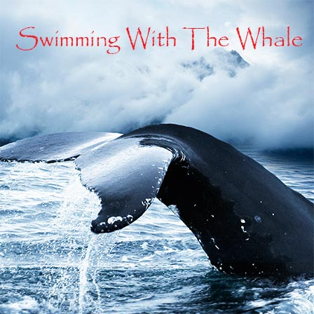 A Day in the Life of Daskalos - Sample Chapter from Swimming With the Whale book by Daniel Joseph