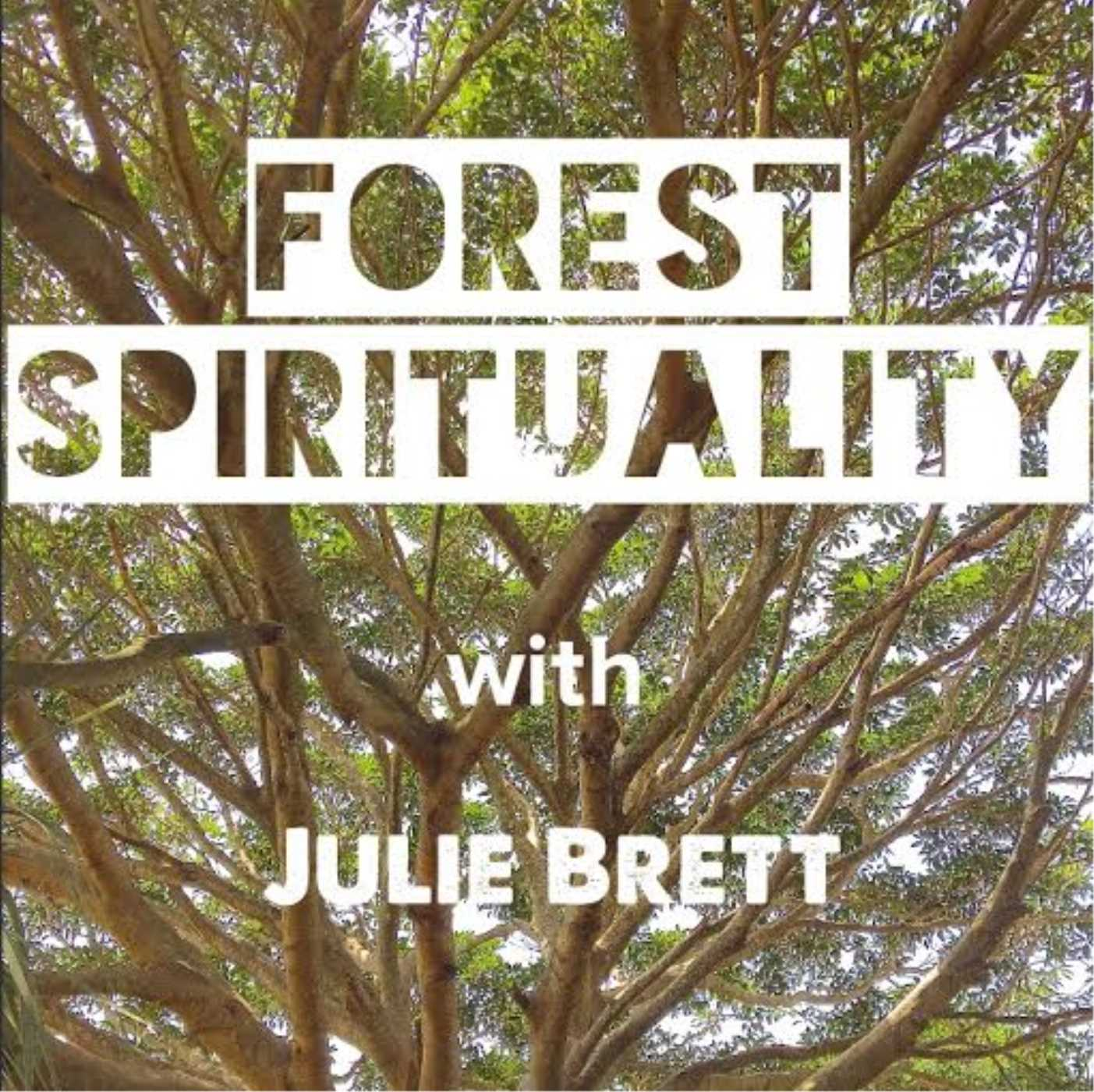 Forest Spirituality with Julie Brett
