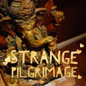 Strange Pilgrimage:  Exploring Sacred Travel with Sarah Seidelmann