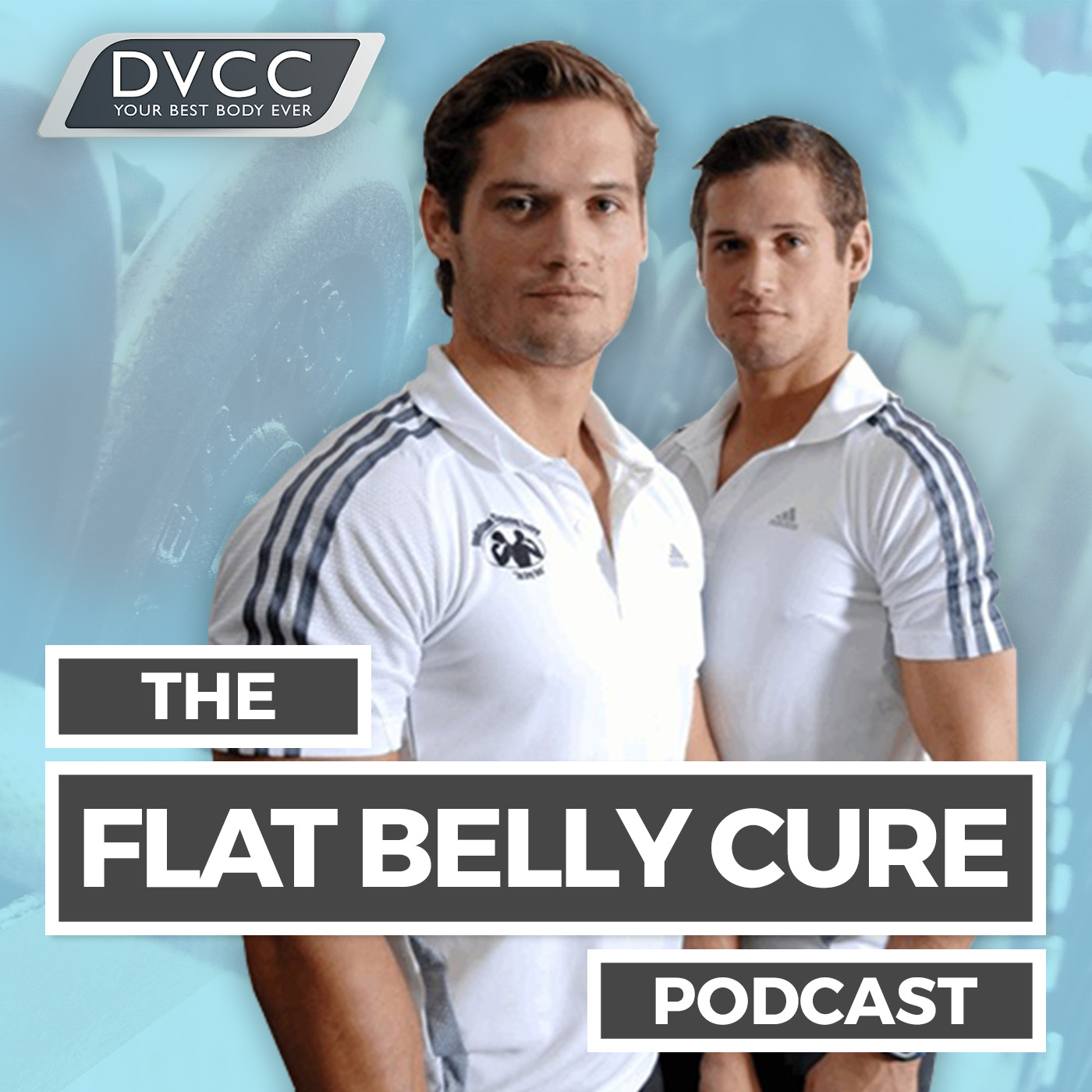 The Flat Belly Cure Podcast