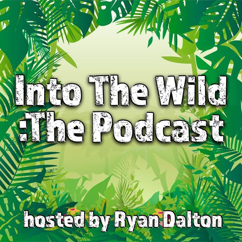 Into The Wild's Podcast