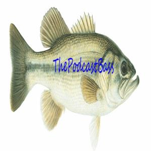 thepodcastbass