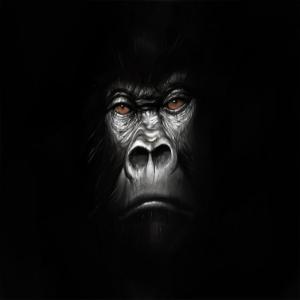 gorillaspeech