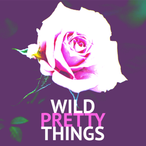 Wild Pretty Things: A Podcast About Sharp Objects