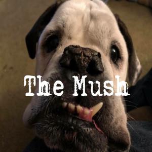 themush