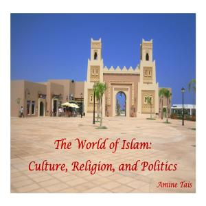 The World of Islam: Culture, Religion, and Politics