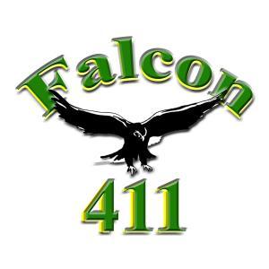 Falcon 411