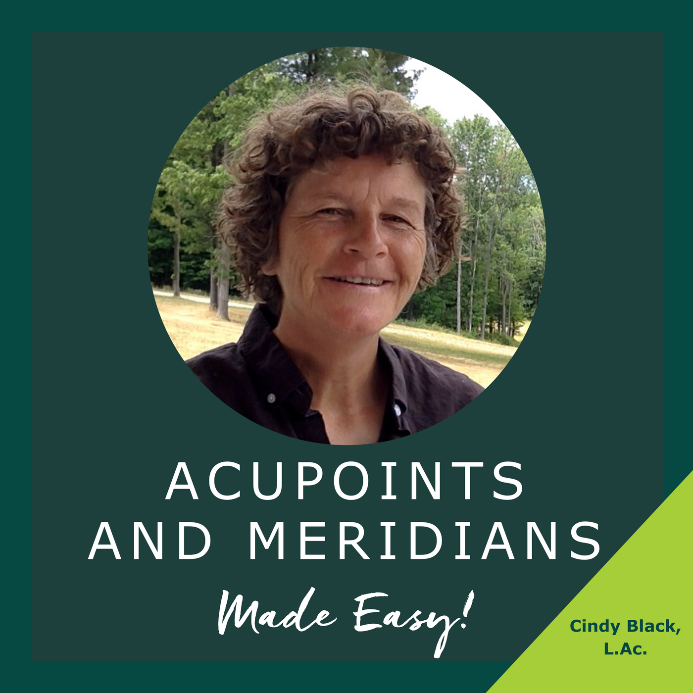 Acupoints and Meridians Made Easy!