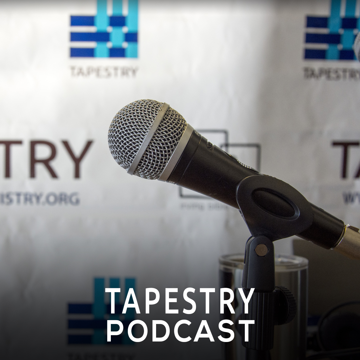 Tapestry Adoption & Foster Care Ministry